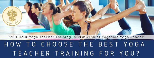 We Are Here To Help You About How To Choose The Right Yoga Teacher Training Program For You.
